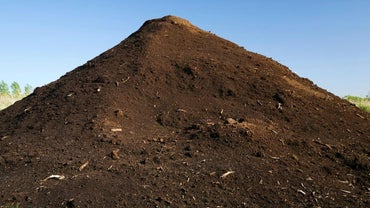 What Types of Stores Sell Topsoil?