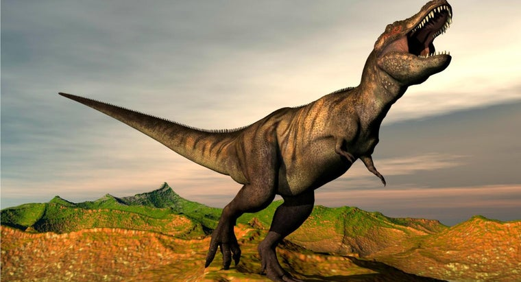 What Are Some Facts About the Tyrannosaurus Rex?