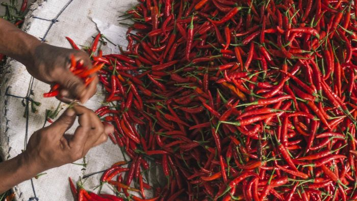 What Are Some Different Varieties of Hot Peppers?