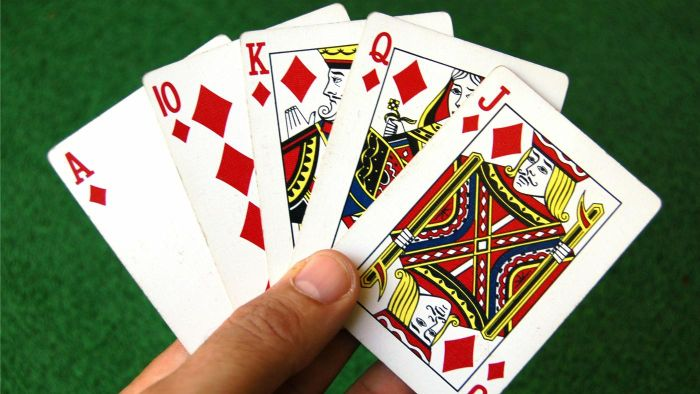 Where can you find instructions for pinochle for beginning players?
