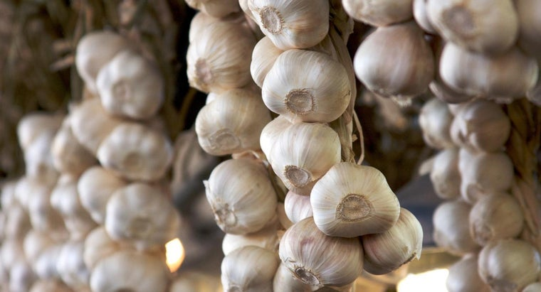 What Are the Top Five Medical Benefits of Garlic?