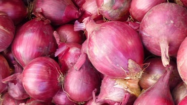 How Do You Store Onions in the Refrigerator?