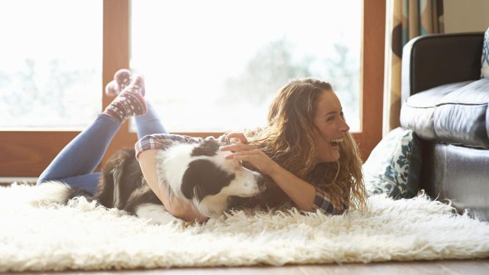 What Are Some Good Ways to Get Rid of Pet Odor in a Carpet?