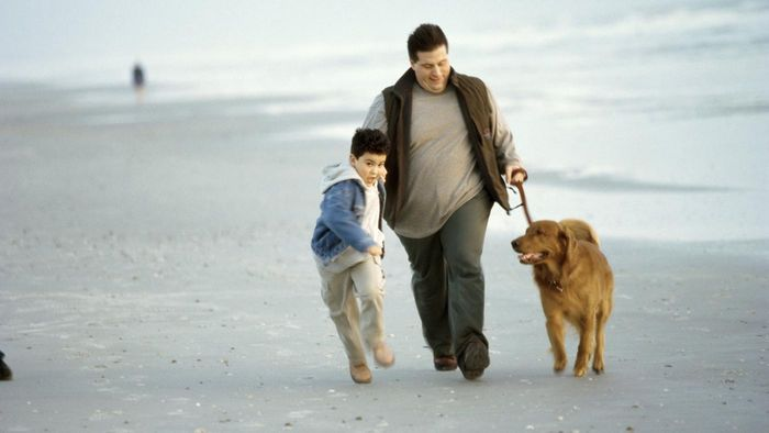What Are the Names of Some Pet-Friendly Beachfront Rentals?