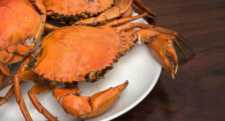 How Do You Clean and Prepare Crabs?