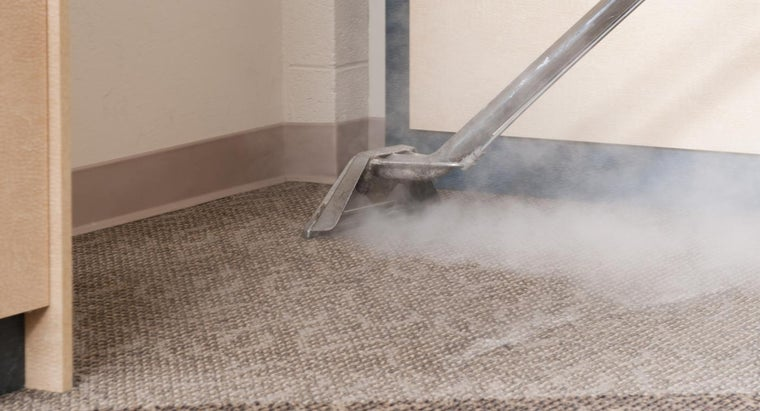 What Factors Affect the Price of Carpet Cleaning?