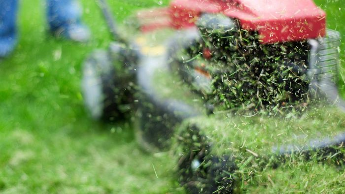 What are the top zero-turn lawnmowers on the market?