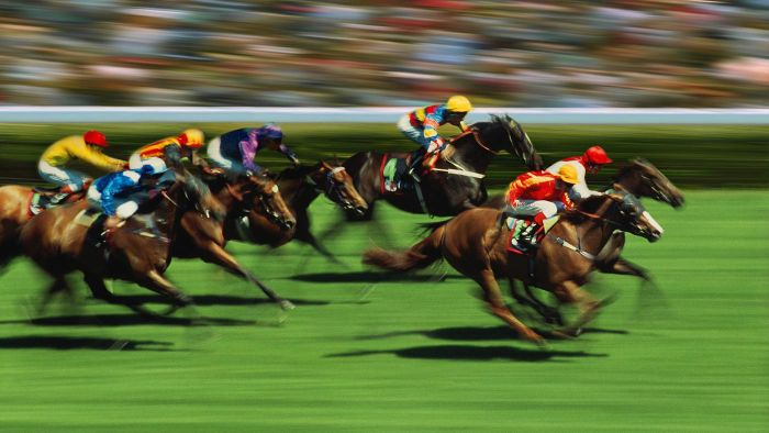 Where Can You Find a Schedule for Horse Races on TV?
