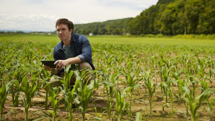 What Are Some Good Online Agriculture Courses?