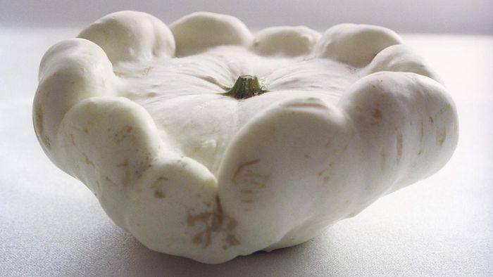 How Can You Cook White Squash?