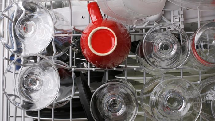 Are Bosch Dishwashers Energy-Efficient?
