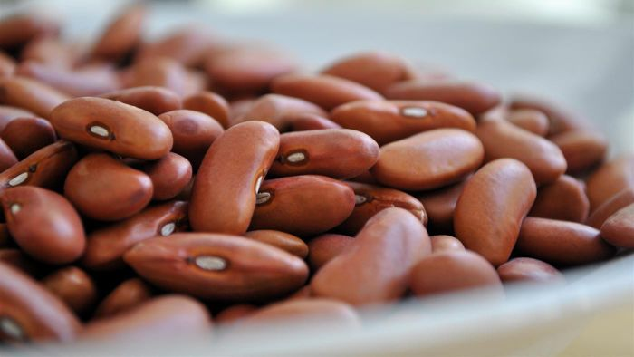 What Are Good Examples of High-Protein Foods?