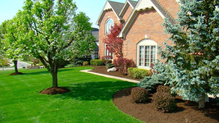 What Are Some Good Mulches for Landscaping?