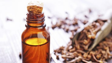 Where Do You Purchase Clove Oil?