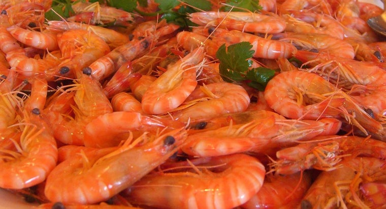 What Is the Difference Between a Prawn and a Shrimp?