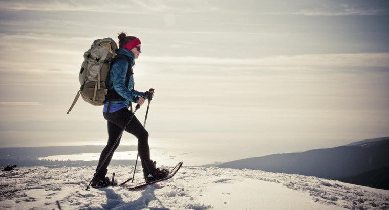 What Are the Basics of Snowshoeing?