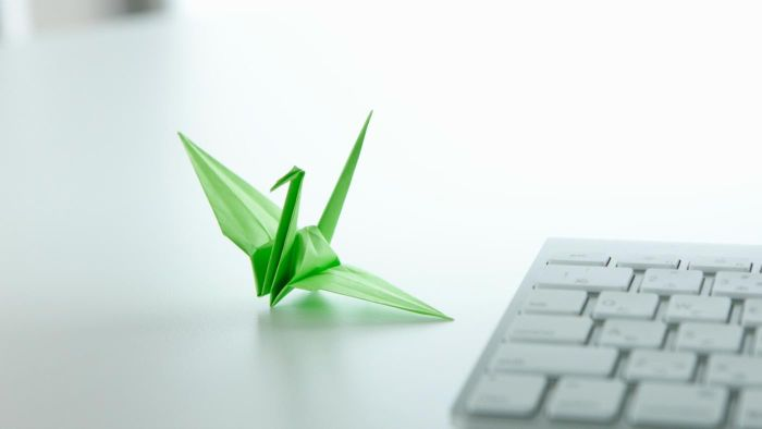 How Do You Make an Origami Paper Crane?