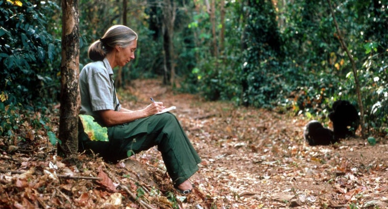 What Are Some Interesting Facts About Jane Goodall?