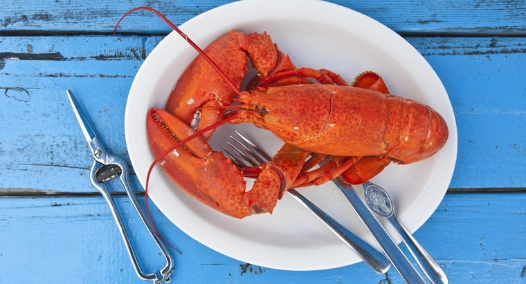 How Do You Cook Lobster at Home?
