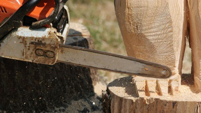How Do You Learn to Be a Chainsaw Carver?