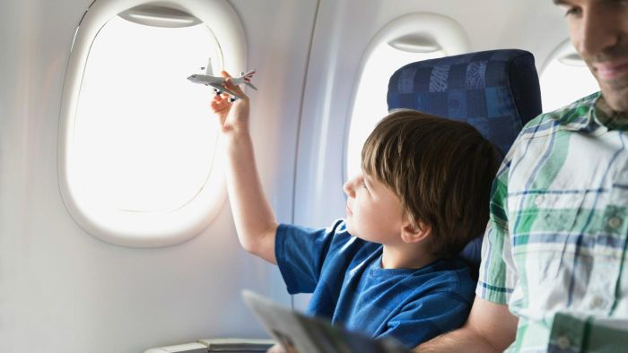 What Is the Least Amount of Air Miles Required for a Free Flight?