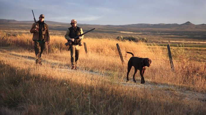 What is the best public hunting land?