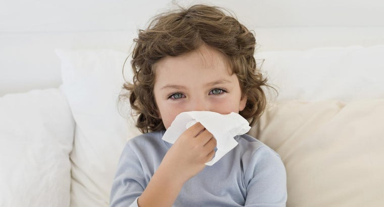 What Are the Best Natural Remedies for Allergies?