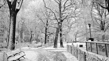 What Are the Causes and Effects of Blizzards?
