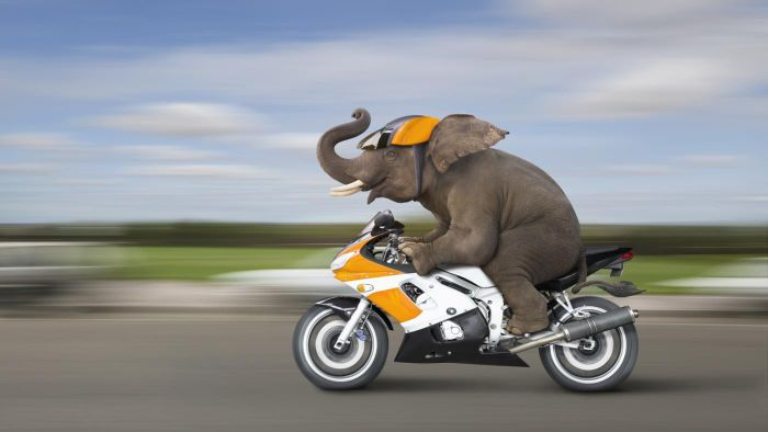 Where can you buy cheap motorcycles?