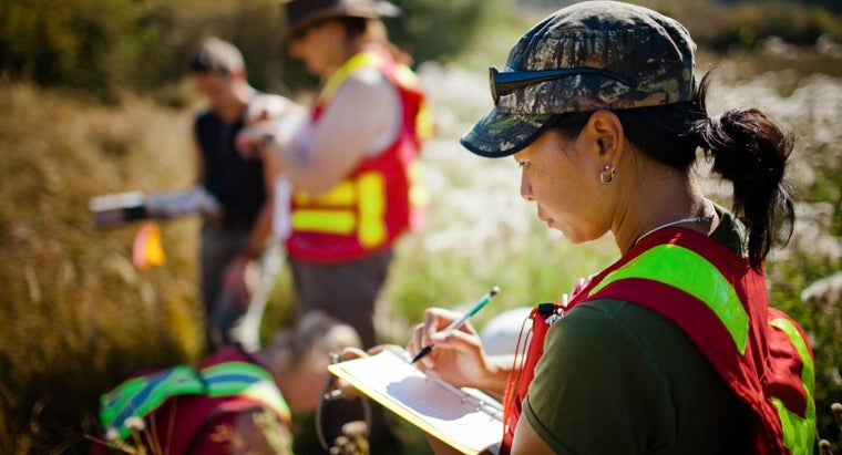 What Careers Are Open to Environmental Science Majors?