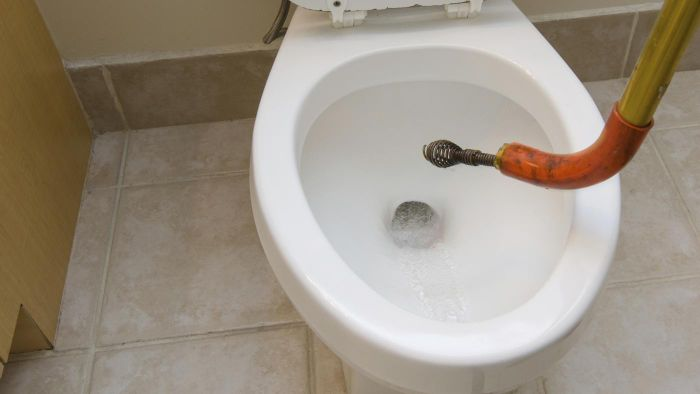 Can You Buy a Plumbing Snake at The Home Depot?