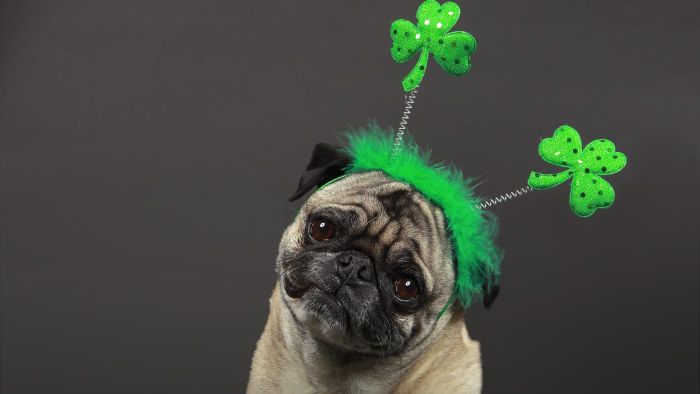 What Are Some St. Patrick's Day Quotes?