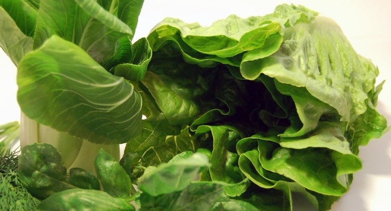 What Are Some Vegetables That Contain Vitamin K?
