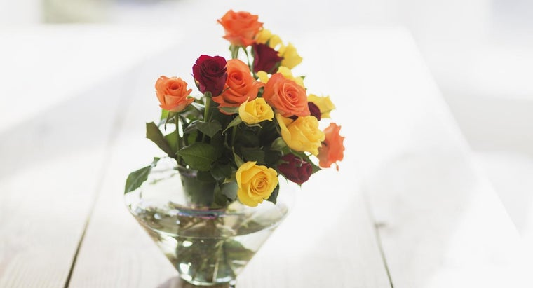 What Are the Meanings of Different Colors of Roses?