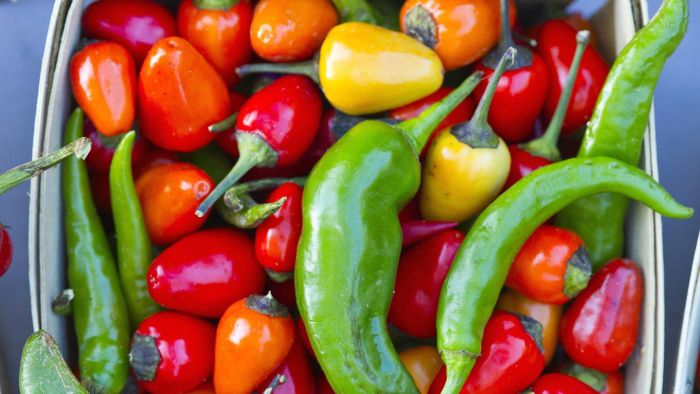 What Are Some Different Types of Peppers?