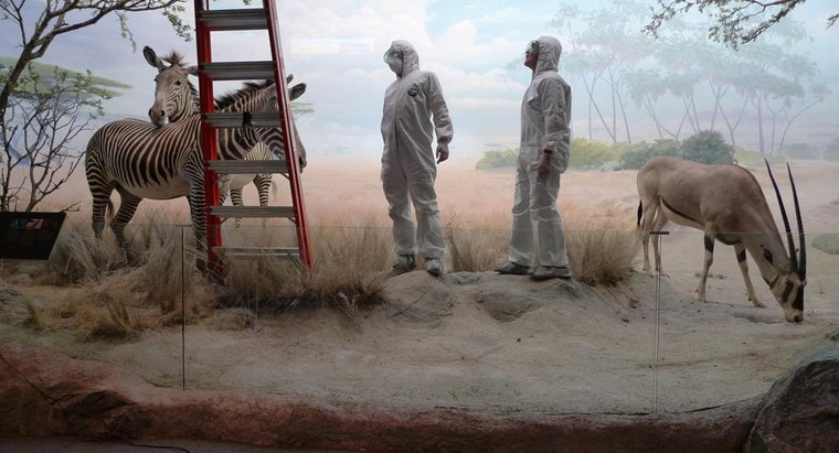 Is a Hazmat Suit Needed to Test for Asbestos in the Home?