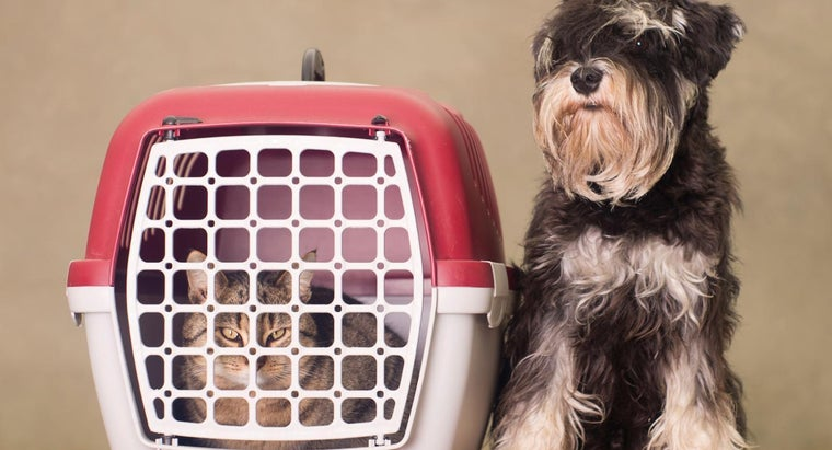 How Do You Put Together a Dog Crate?