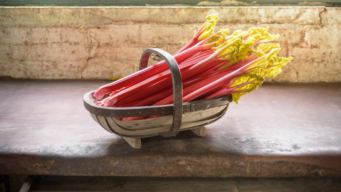 What Is a Good Recipe for Rhubarb Crisp?