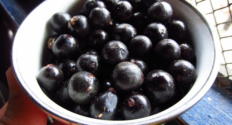 What Are Some Side Effects and Warnings for Using Acai Berries?