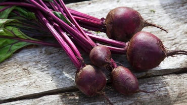 What Are Some of the Benefits of Eating Beets?