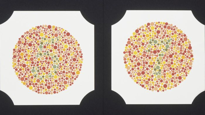 What Is Color Blindness?