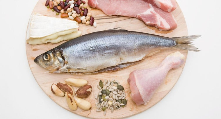 Are Protein Diet Recipes Healthy?