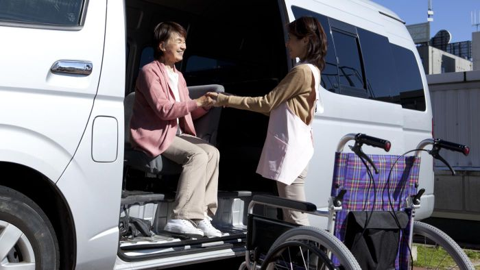 Are There Companies That Provide Transportation for Seniors in the Community?