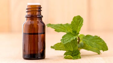 What Are Some Good Uses for Peppermint Essential Oil?