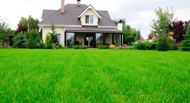 What Are Some Good Fertilizers for New Grass?