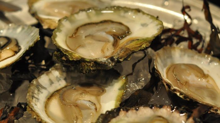 How do you cook oysters?