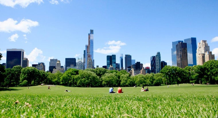 What Are Some Fun Things to Do in New York?