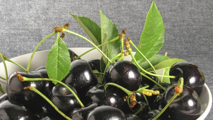 How Do You Use Black Cherry Juice for Gout?