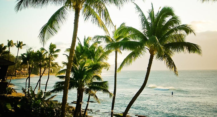 What Are Some Fun Facts About Hawaii?