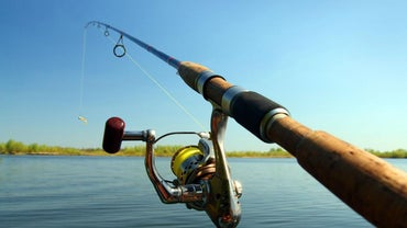 How Do You Determine What Size Hook Is Needed for Fishing?